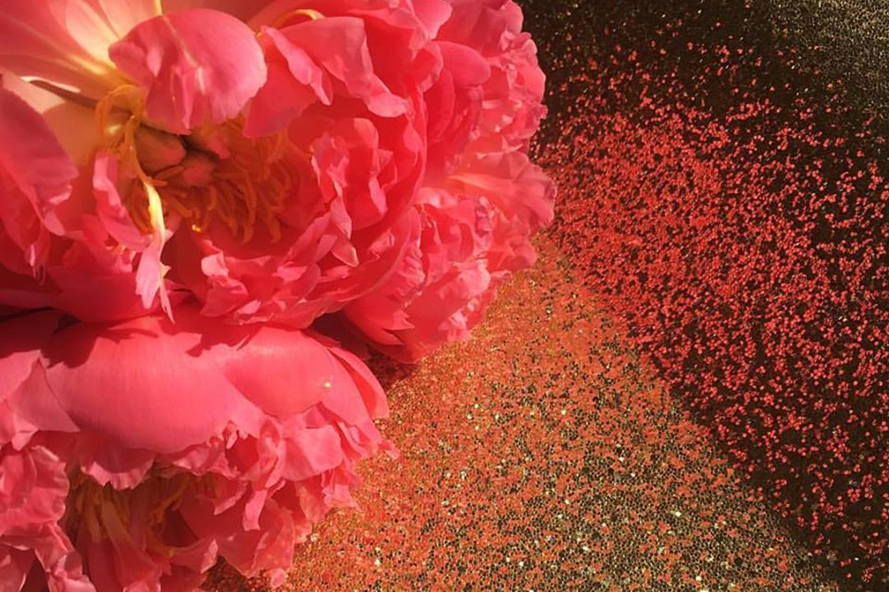 flowers-sparkle