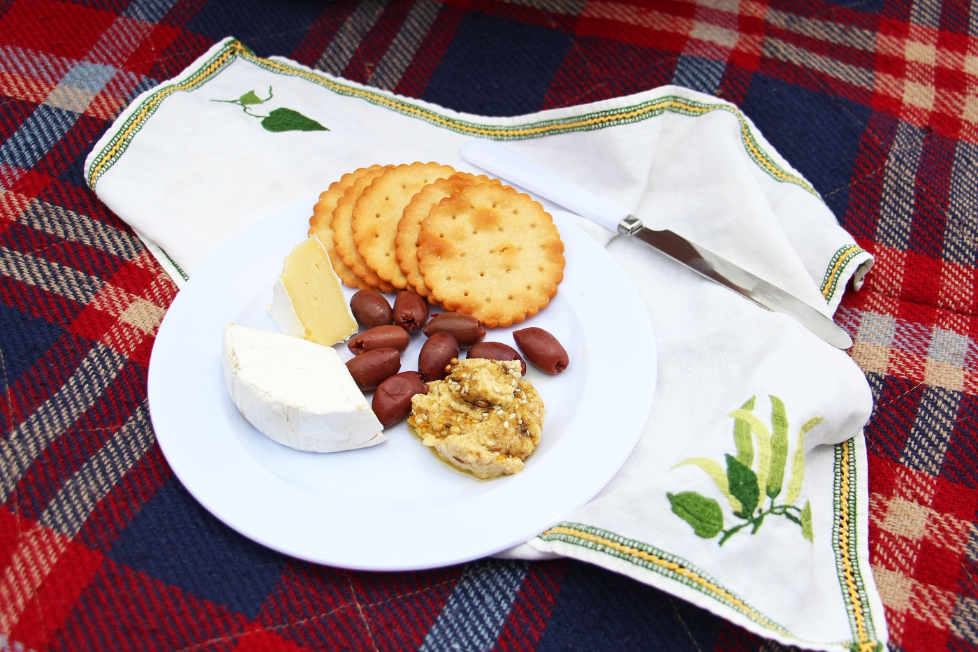 picnic-plate